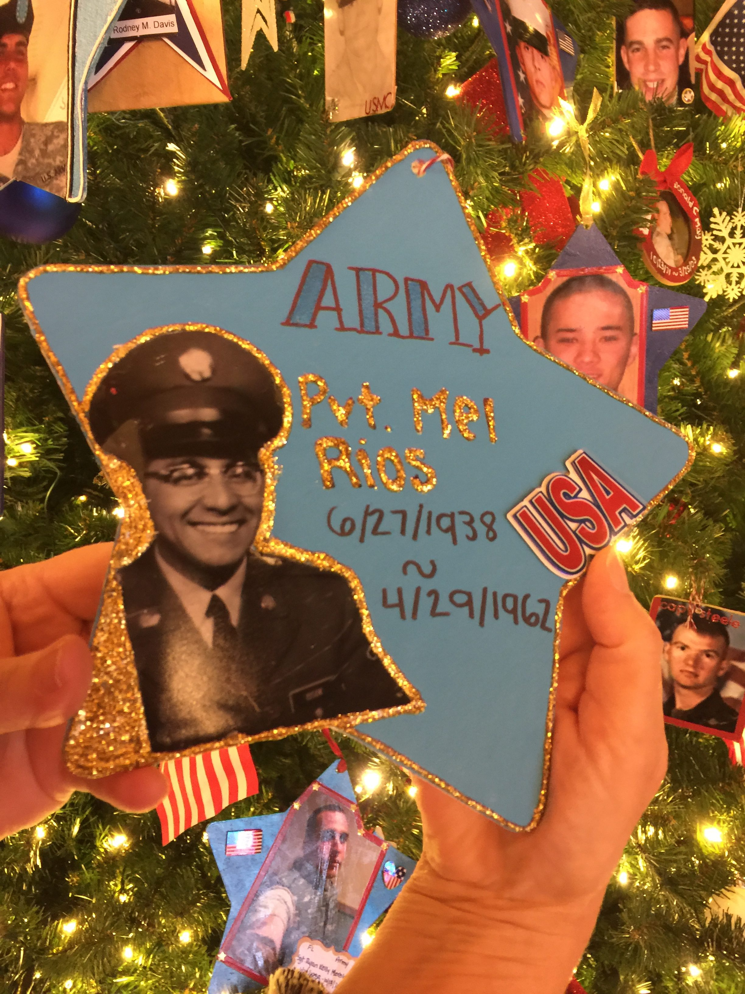 Tree of Honor Springfield IL 2017-11
